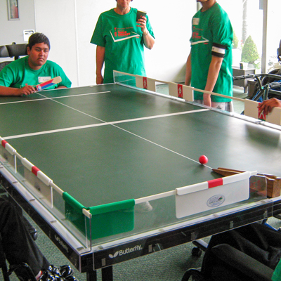 sc 1 st  AMV Playgrounds & Table Cricket Full Set (Clear)