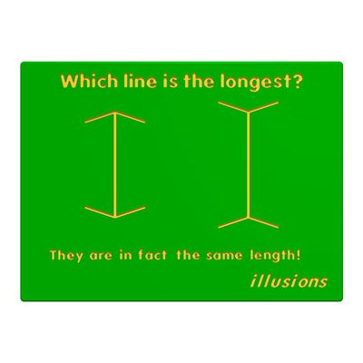 Illusions Line Length Play Panel