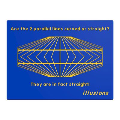 Illusions Parallel Lines Play Panel